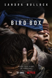 cartaz de Bird Box